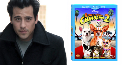 Marcus Coloma – Beverly Hills Chihuahua 2 (DVD)
